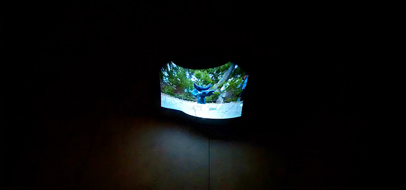 VIDEO Installation